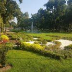 Parcurile din oraş, locurile preferate pentru a consuma alcool