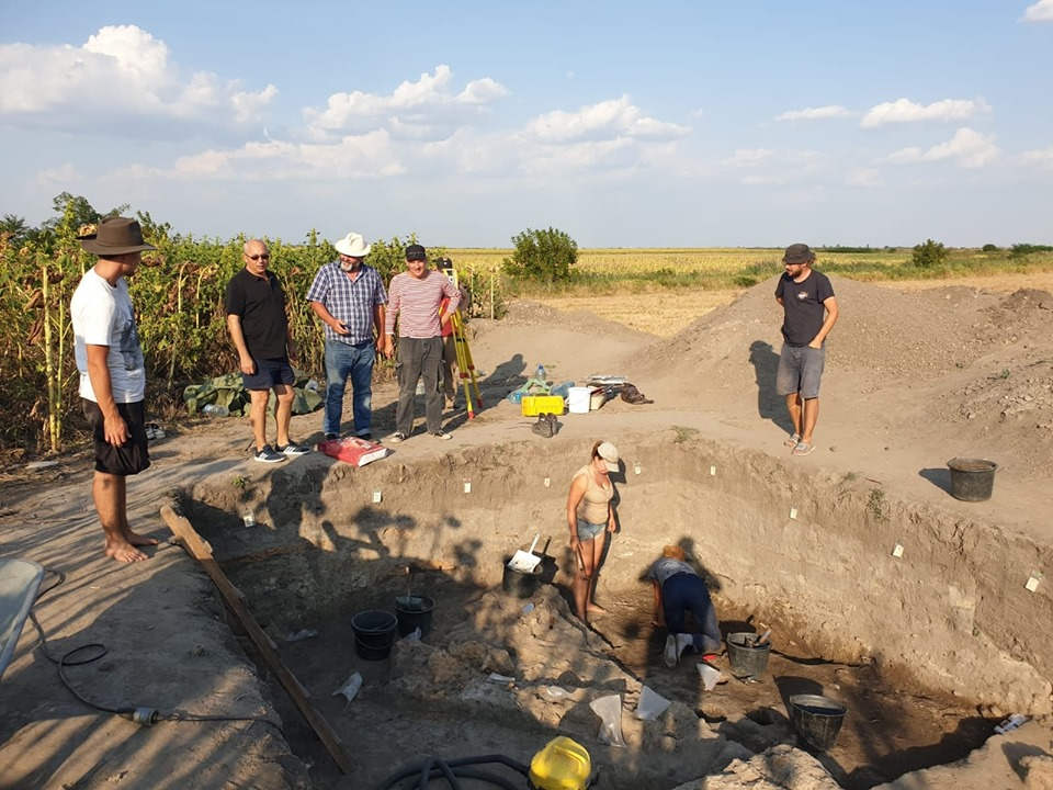 Muzeul Banatului anunţă descoperiri arheologice importante la Dudeștii Vechi