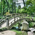 Robu anunţă realizarea unui parc nou de 4 hectare, în Dâmboviţa