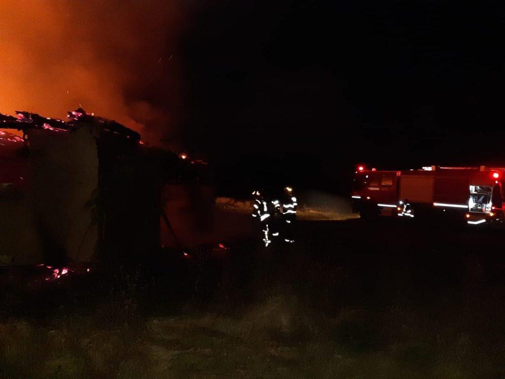 Intervenție dificilă a pompierilor cărășeni! Flăcări la un saivan pentru animale