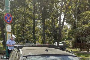 Parcurile din oraș rămân în atenția polițiștilor locali – 187 sancțiuni aplicate de la începutul acestei luni