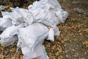 Sancționat cu 2000 lei și obligat să igienizeze rampa de deșeuri