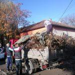 Polițiștii locali aflați în timpul liber au curățat sâmbătă zona Modern de resturile vegetale