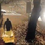 Timișorean amendat cu 3.000 de lei după ce a fost surprins aruncând deșeuri cu roaba
