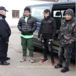 Trei afgani, prinşi la Cenad când intenţionau să treacă pe jos în Ungaria