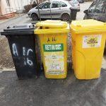 Reprezentanții ADID Timiș reamintesc cum colectăm separat deșeurile și ce depunem în fiecare pubelă