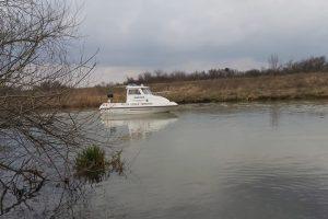 Polițiștii locali au reluat patrularea pe Canalul Bega, cu șalupa din dotare