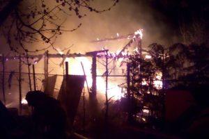 Incendiu la Dumbrăviţa. Daune materiale şi aproape 100 de pui arşi