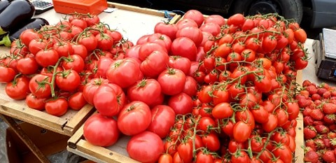 Ministrul Agriculturii anunţă un ajutor de 2.000 de euro pentru legumicultori