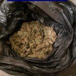 Percheziţii la traficanţii de droguri