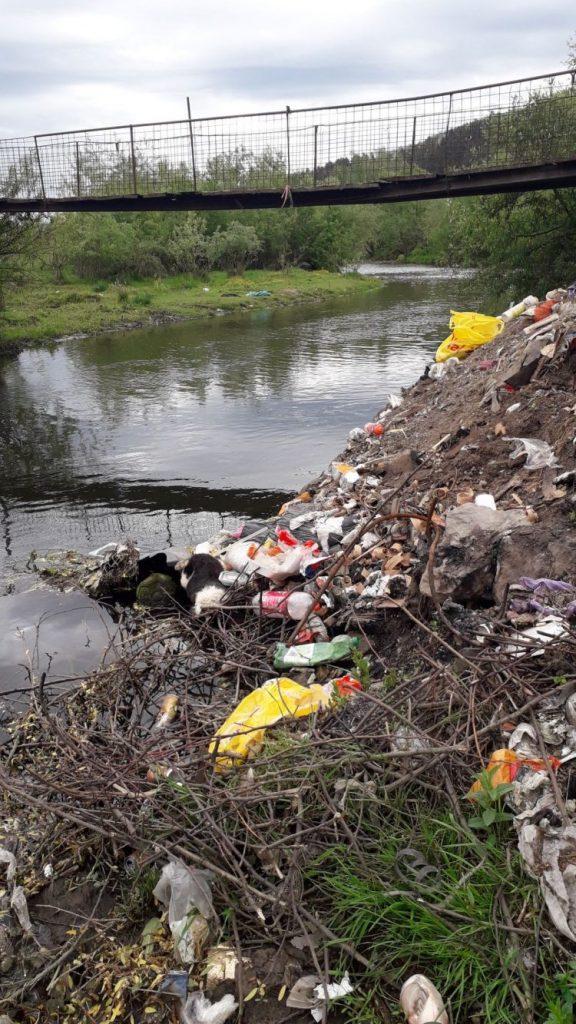 În ce stare sunt cursurile de apă din Caraș-Severin