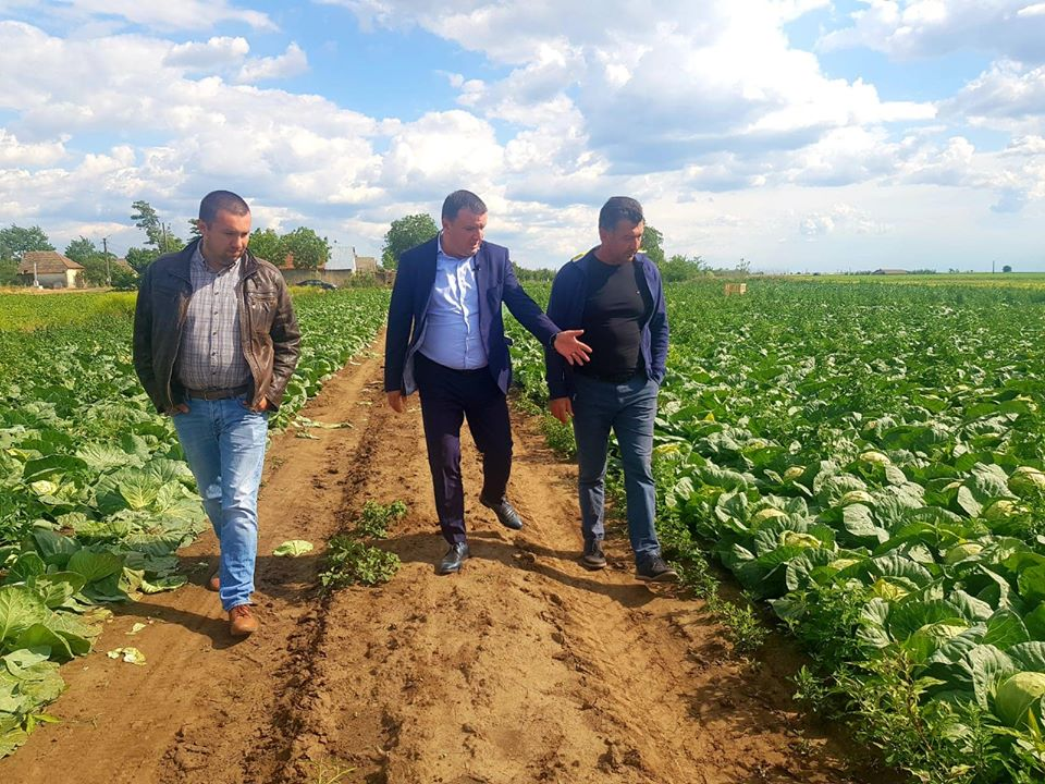 OcroTim: Soluții de sprijin real pentru producătorii agricoli