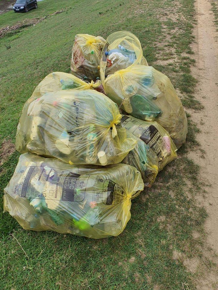 ADID Timiș organizează acțiune de ecologizare în cartiere, de Ziua Națională a Curățeniei