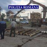 Acțiune de amploare pentru prevenirea și combaterea faptelor ilegale din domeniul silvic
