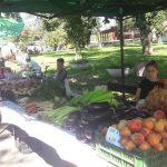 Piața Micilor Producători, în weekend la Muzeul Satului