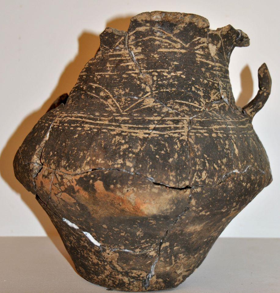 Morminte de incinerație descoperite de specialiștii din Timiș, pe sit-ul arheologic de la Susani