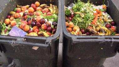 Ziua Internațională de Conștientizare a Risipei Alimentare, sărbătorită la CRAFT