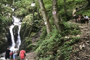 Asociația de Turism Timiș promovează turismul de familie, în siguranță. Ce destinații aveți la dispoziție în județ