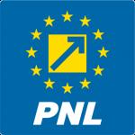 Biroul Politic Local PNL Timișoara, votat astăzi în BPJ PNL Timiș