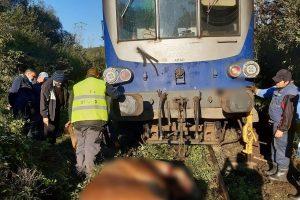 Nu circulă trenurile între Timişoara Nord şi Reşiţa după ce un tren a deraiat și a lovit doi cai
