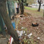 Platoul Dâmbovița curățat de deșeuri, iar micii comercianți îndrumați către Piața Doina în condiții mai sigure