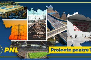 Bătălia programelor de guvernare: PNL, cifre și argumente/PSD, poze și desene (P)