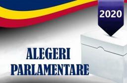Rezultate alegeri parlamentare în Timiș