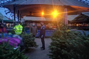 Controale pentru verificarea legalității celor care transportă și comercializează pomi de Crăciun