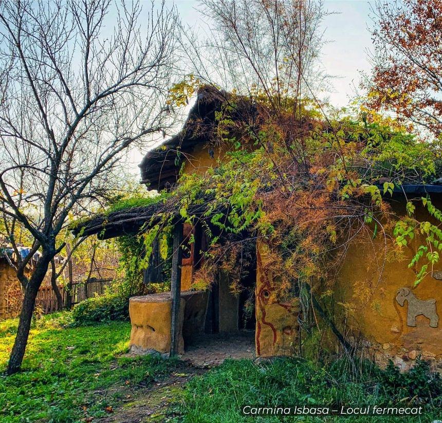 """A ieșit pe locul doi la concursul """"Cea mai frumoasă casă din Banat"""""""
