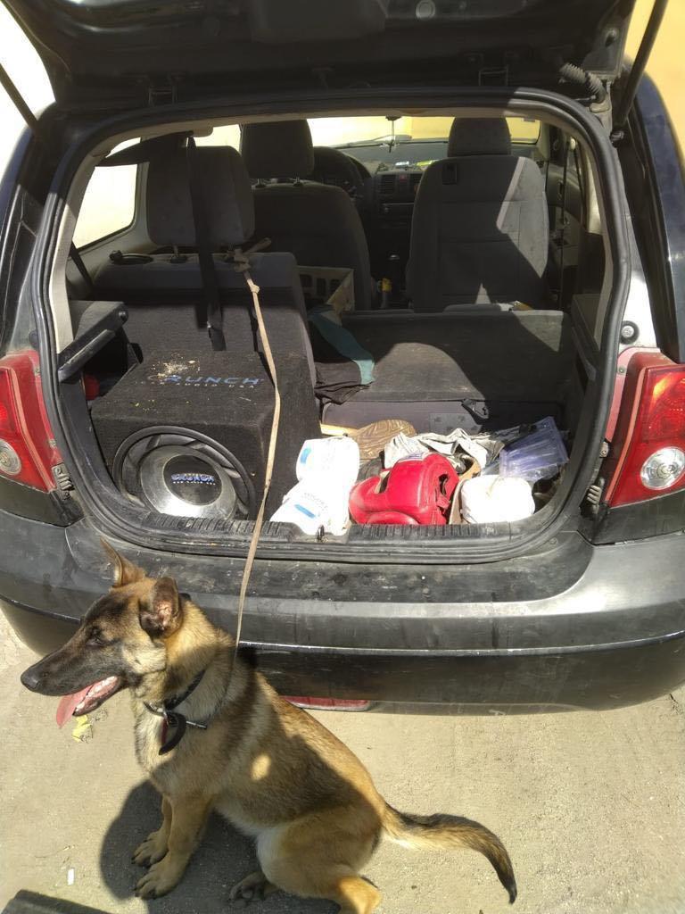 Câine abandonat într-o mașină