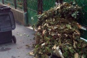 De săptămâna viitoare va începe colectarea resturilor vegetale pe raza comunei Giroc