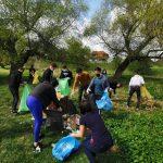 Acțiune de ecologizare organizată de social-democrați pe malul râului Timiș, în localitatea Șag