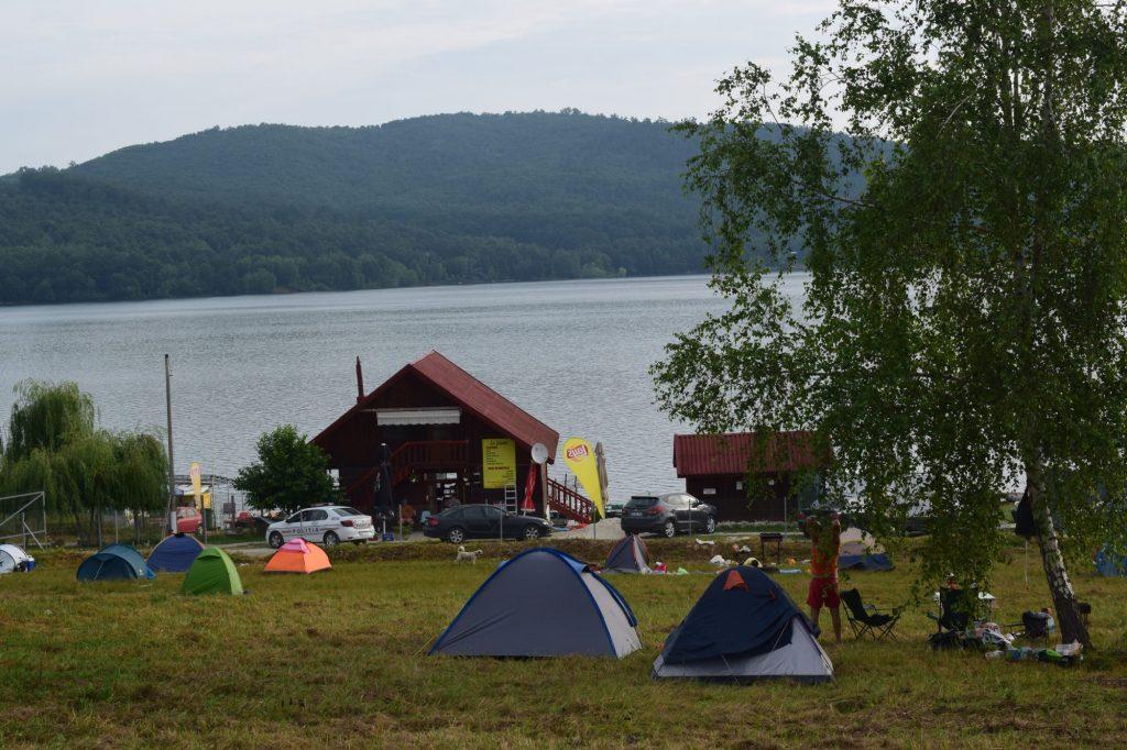 Între nuferi, păsări și pești, în Rezervația Naturală Lacul Surduc. Plimbări cu catamaranul, gratuit, pe lac