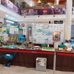 Cele mai frumoase lucrări participante la concursul 3R- Reducere, Refolosire, Reciclare a deșeurilor sunt expuse la Iulius Town