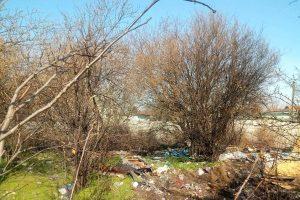 Aproape 700 de tone de deșeuri, ridicate într-o lună și jumătate din Kuncz