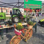 Nou Consiliu de Administrație la S.C. Horticultura