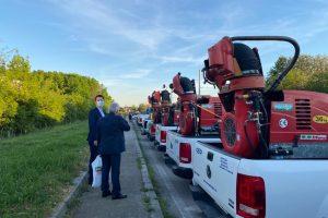 Se reia dezinsecția în Timișoara
