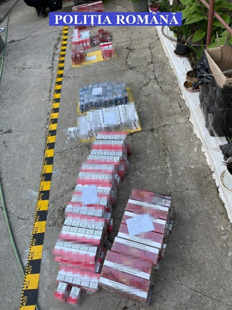 Bani, tutun, cannabis, confiscate de la contrabandiștii de țigări din Timișoara, Chișoda și Recaș