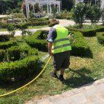 Primăria a solicitat ca SC Horticultura să remedieze problemele din Parcul Rozelor