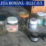 Bani, plante de cannabis și alte droguri descoperite de polițiști în urma unei percheziții