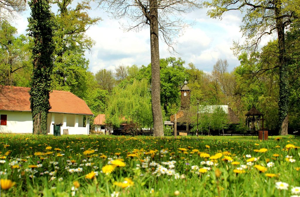 La Muzeul Satului Bănățean au fost deschise mai multe obiective pentru vizitatori