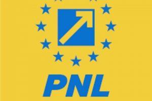 Alegerile pentru conducerea PNL Timișoara, anulate