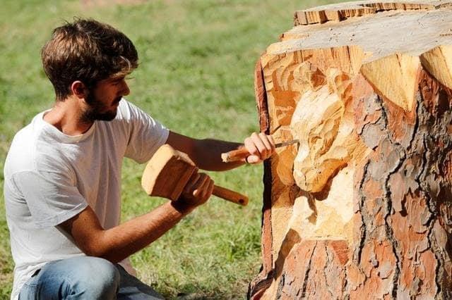O nouă viață, prin artă, pentru arborii uscați ai Timișoarei