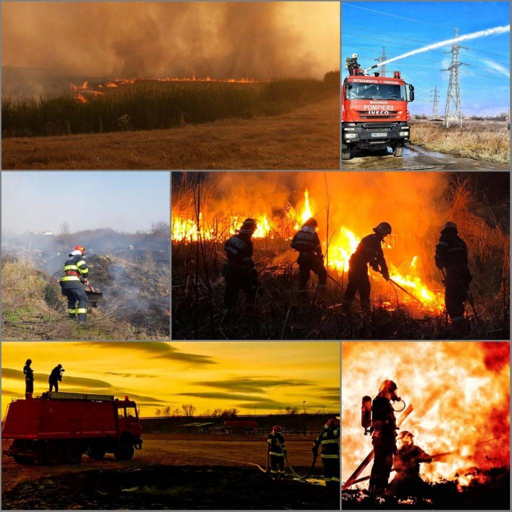 Intervențiile pompierilor timișeni în luna septembrie. Angajații ISU au avut aproape 3.000 de solicitări