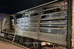 29 de migranți turci, depistați la Nădlac II