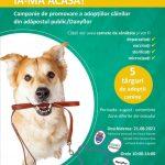 Primul târg din campania pentru adopția câinilor aflați în adăpostul public va avea loc sâmbătă