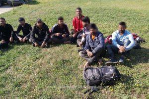 Două călăuze şi opt migranți, opriţi la frontiera cu Serbia