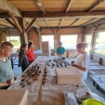 Un voluntar din Frankfurt participă la săpăturile de la Cornești Iarcuri, într-un proiect al Muzeului Banatului