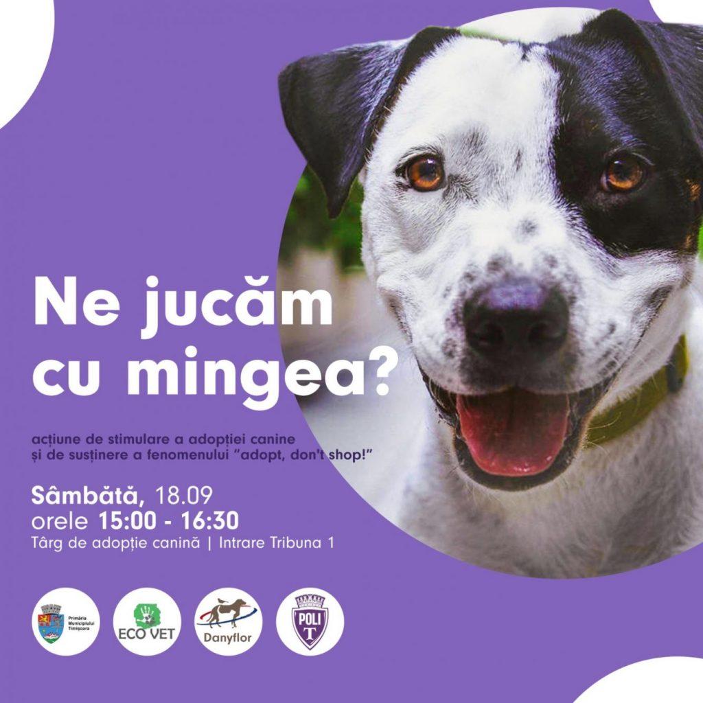 Fotbaliștii de la Poli susțin adopția câinilor fără stăpân