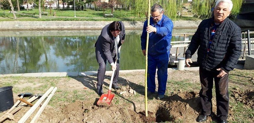 Consiliul de Administrație al Horticultura SA a angajat un avocat pentru a apăra societatea în procesele intentate de Andrei Drăgilă